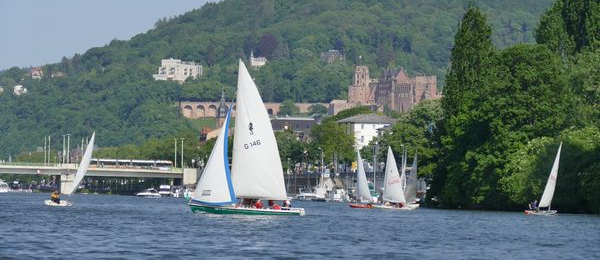 Segelregatten vor imposanter Kulisse im Herzen von Heidelberg